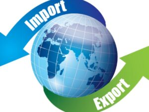 Specialized Inspection For Import And Export Goods